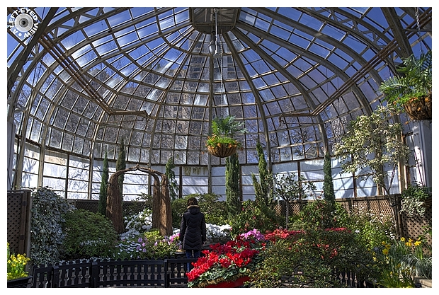 """Lincoln Park Conservatory"", ""A Left-Eyed View"""