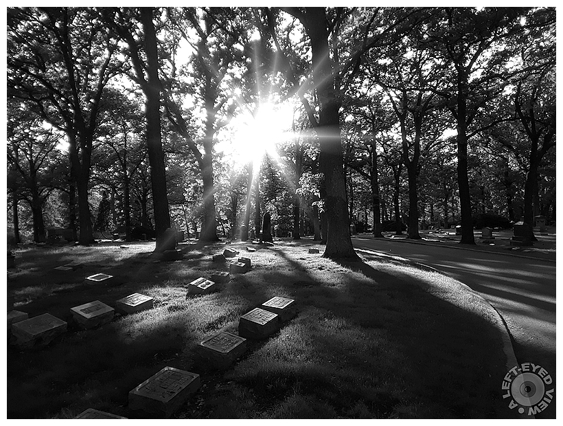 """""""A Left-Eyed View"""", Sabourin, Bronswood Cemetery"""