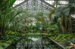 """""""A Left-Eyed View"""", Garfield Park Conservatory"""