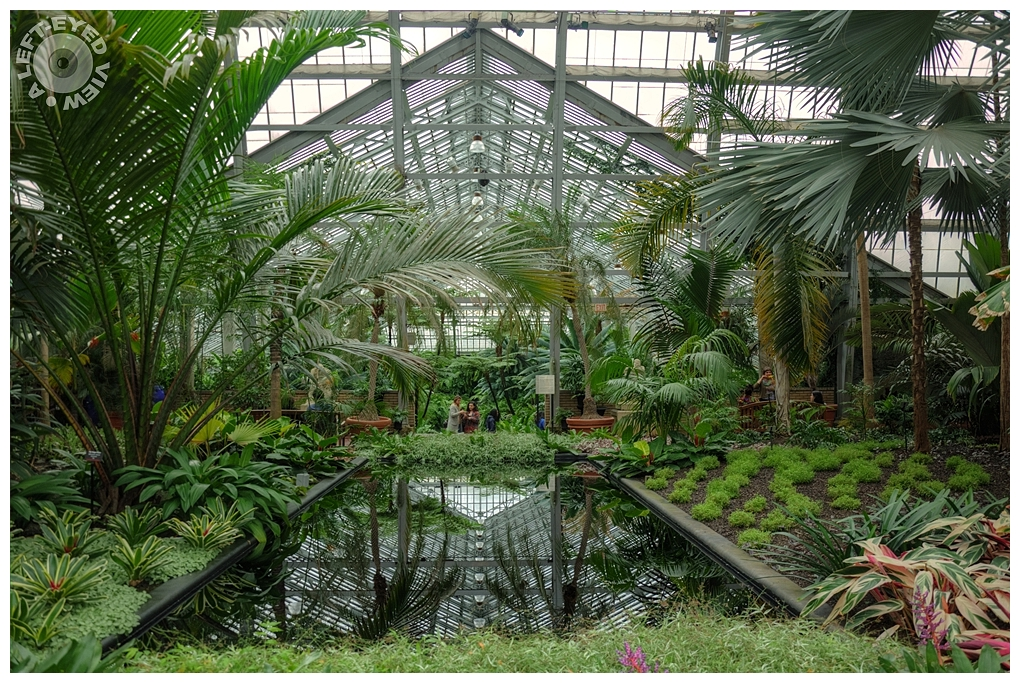 """A Left-Eyed View"", Garfield Park Conservatory"