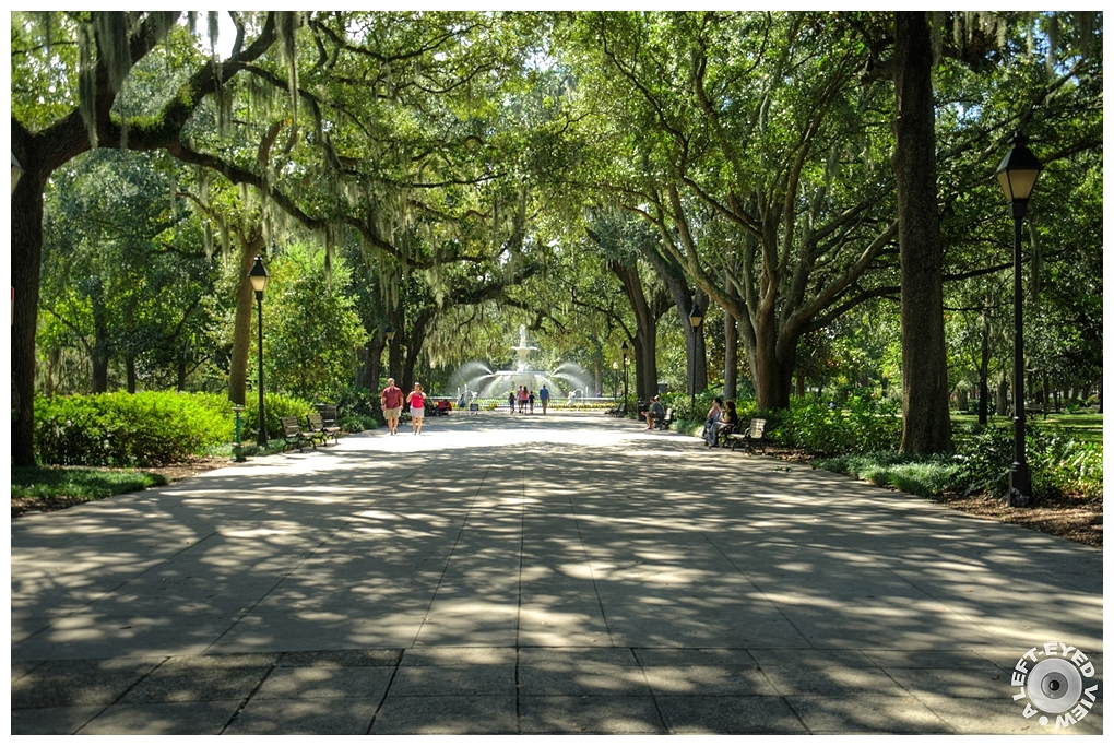 """A Left-Eyed View"", Sabourin, ""Forsyth Park"""