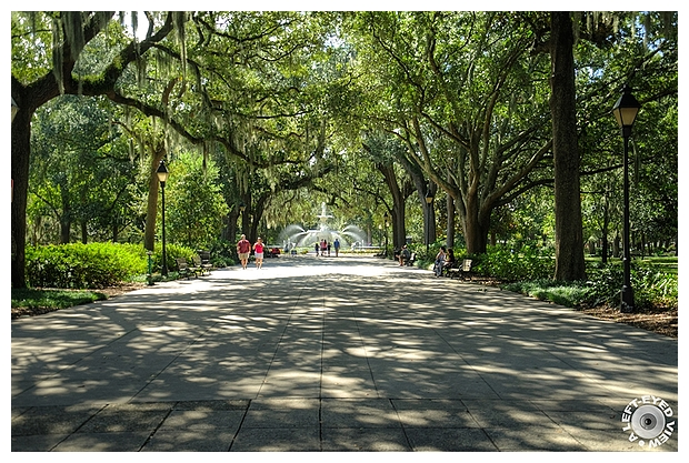 Entering Forsyth Park