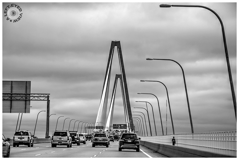 """A Left-Eyed View"", Arthur Ravenel Jr. Bridge"
