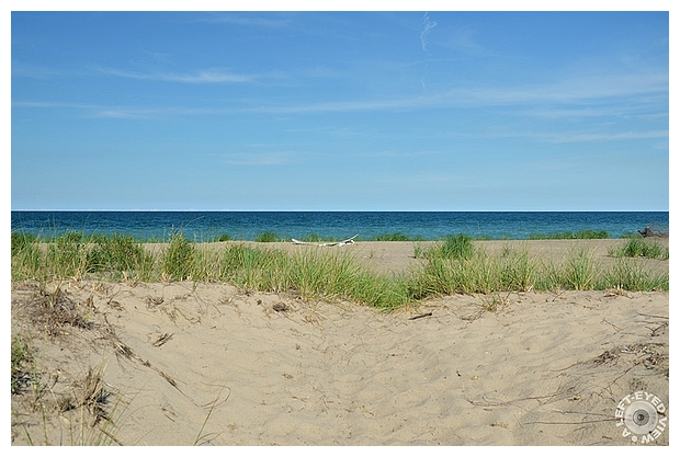 Through the Dunes toward Lake Michigan