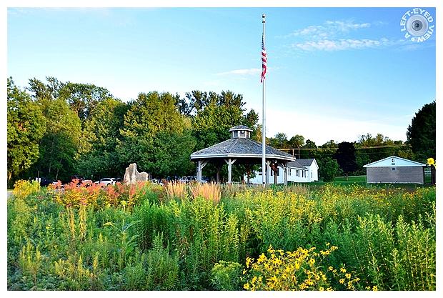 """A Left-Eyed View"", Sabourin, Pollinator Garden"