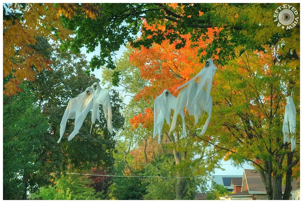 """A Left-Eyed View"", Sabourin, Halloween"