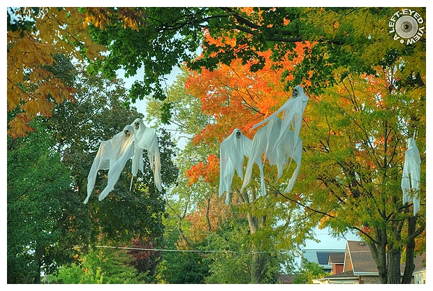 Ghouls over Harrison Avenue