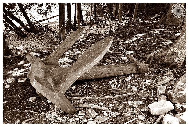 Shipwreck's Anchor