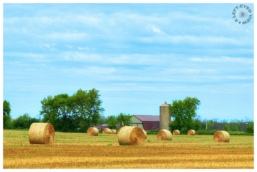"""""""A Left-Eyed View"""", Sabourin, Bales of Hay"""