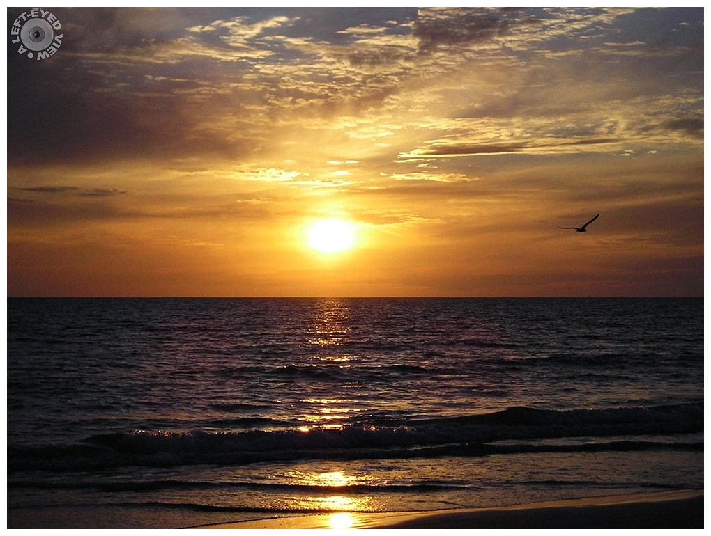 """A Left-Eyed View"", Sabourin, Holmes Beach"
