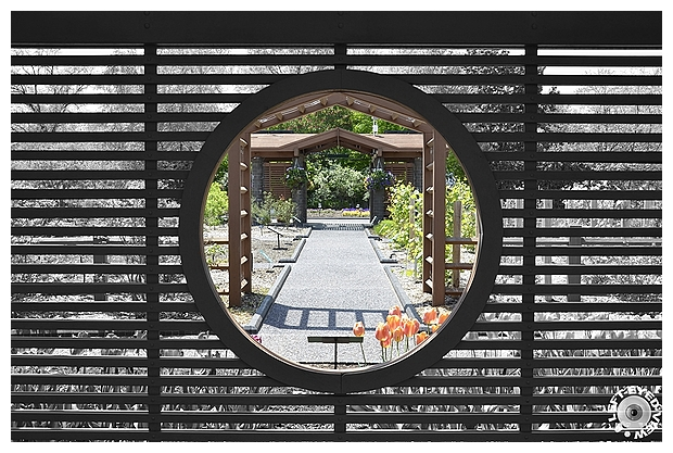 """A Left-Eyed View"", Sabourin, ""Botanical Garden"""