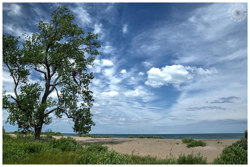 """A Left-Eyed View"", Sabourin, Dunes"