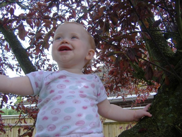 Molly in a Cherry Tree
