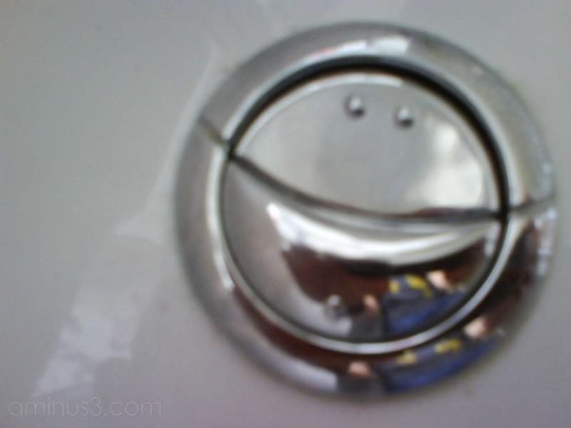 toilet flush smiling