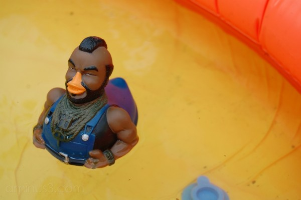 Mr T Goes for a Swim