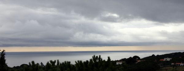 Detalls d'un dia plujós.