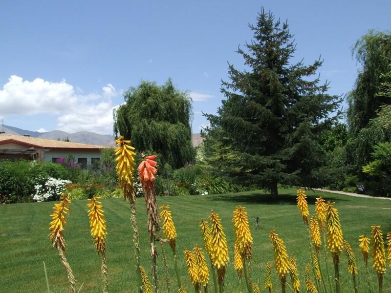 Great Garden . . .