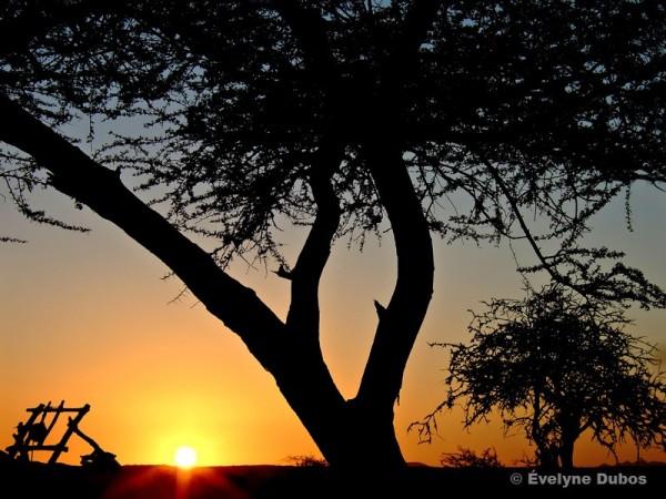 Couché de soleil au Niger