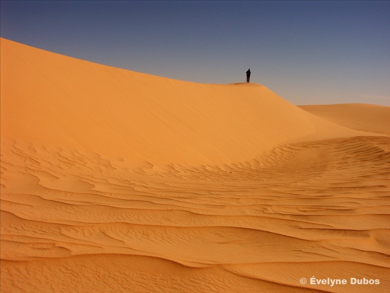 Dunes du Ténéré