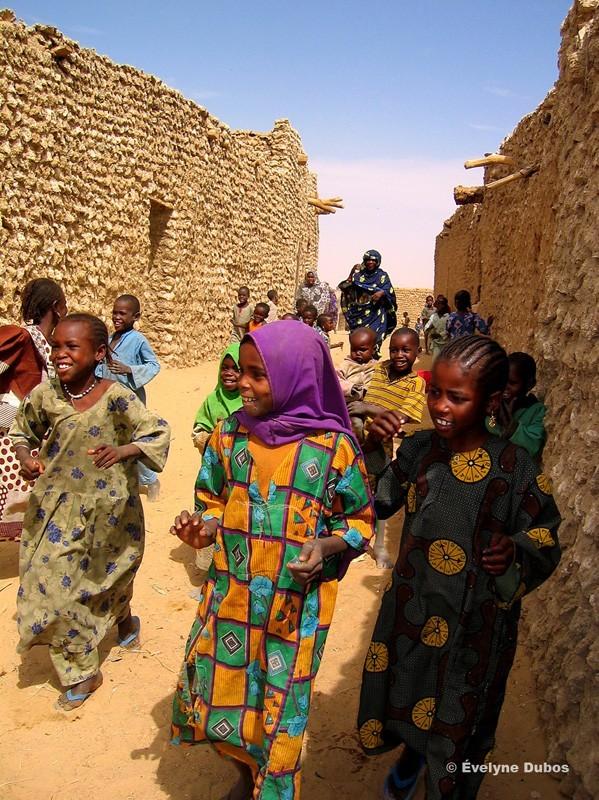 Un accueil mouvementé et joyeux (Niger)