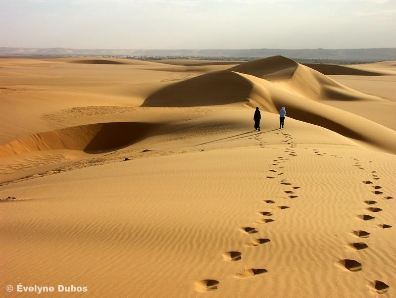 Enfin, la sortie du désert (Niger)