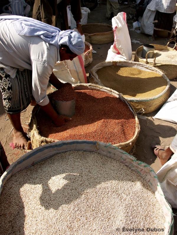 Les 3 couleurs du sorgho (Yémen)