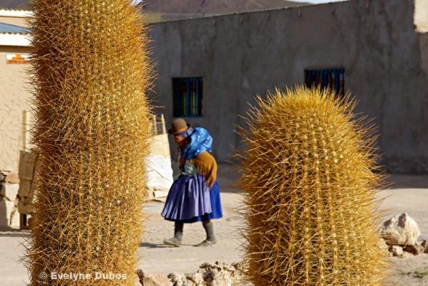 La femme-cactus (Bolivia).