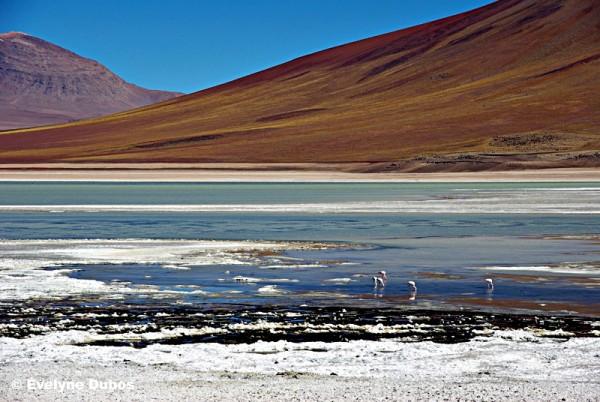 "Couleurs ""arc en ciel"" (Bolivia)"
