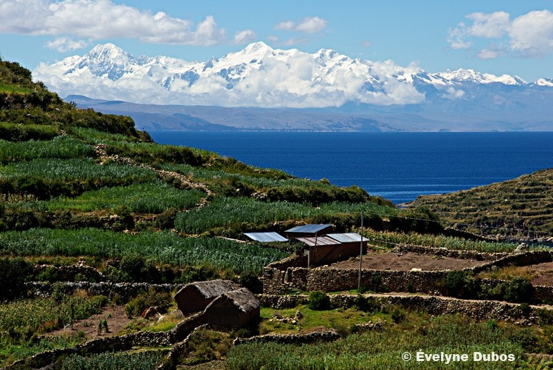 Room with a view. (Titicaca lake-Bolivia)