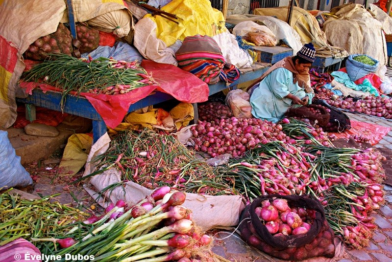 Onions, nothing but onions !! (Bolivia).