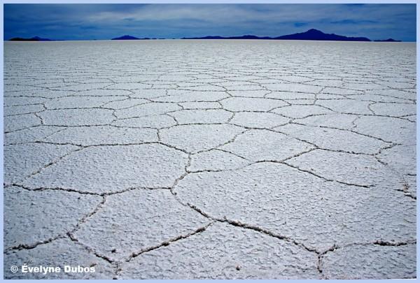 Salt desert  - ( Uyuni salar - Bolivia) -