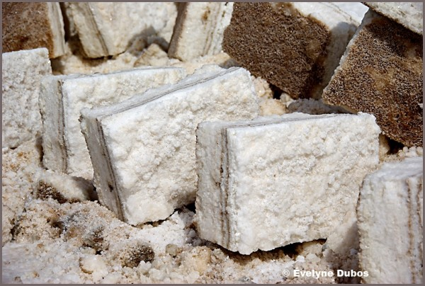 Salted sugars...   - Uyuni salar -  (Bolivia)