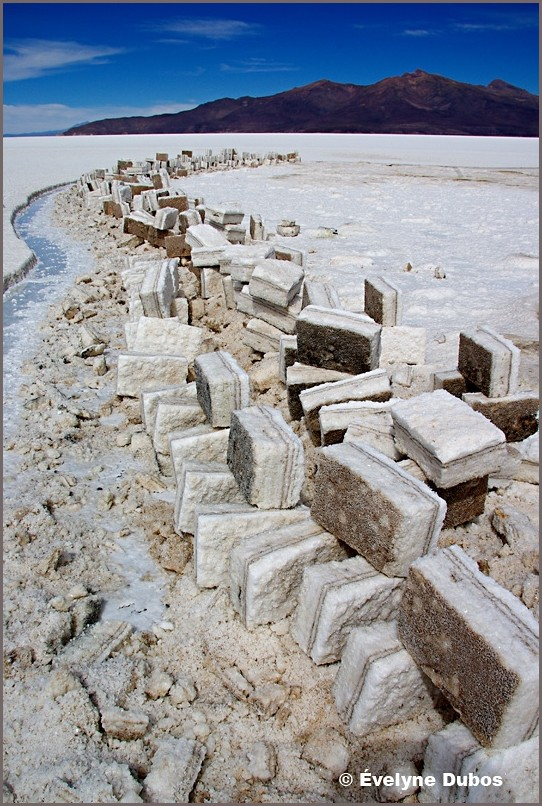 ...Or salt domino ?  -Uyuni salar- (Bolivia)