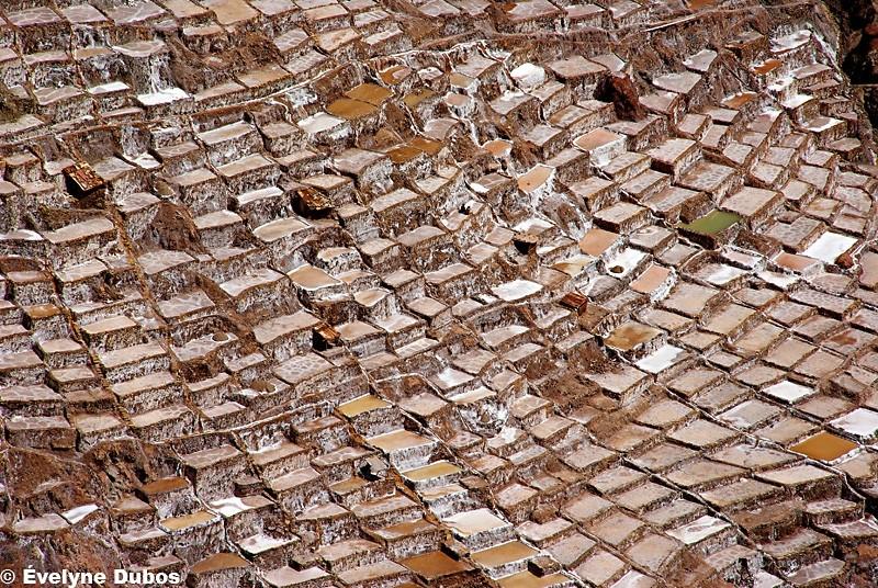 Las salinas de Maras -1-  (Peru)