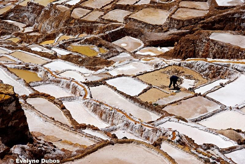 Las salinas de Maras  -2-   (Peru)