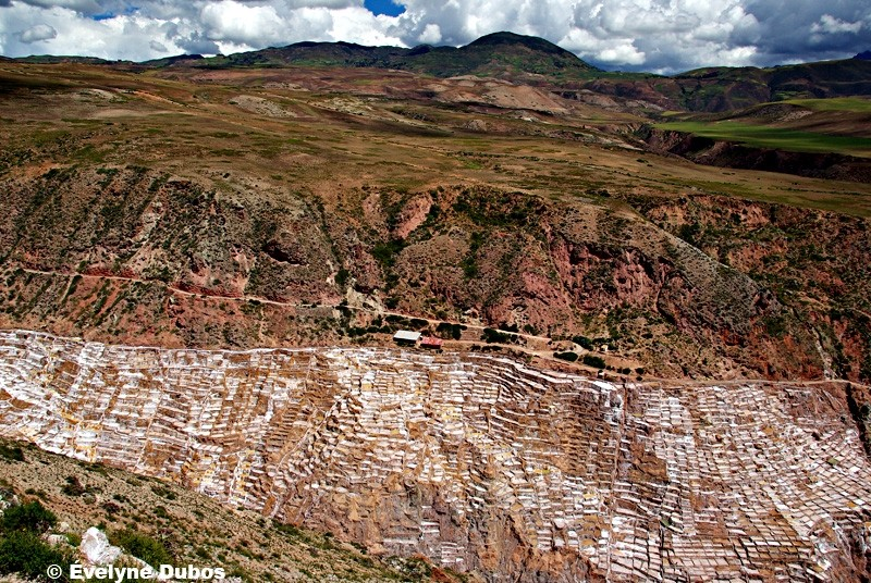 Las salinas de Maras -3-  (Peru)