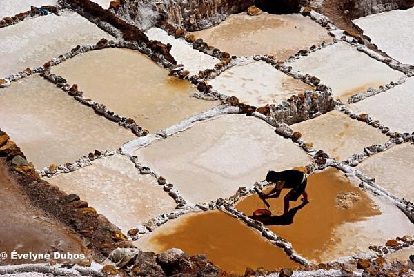 Las salinas de Maras  - 4 -  (Peru)