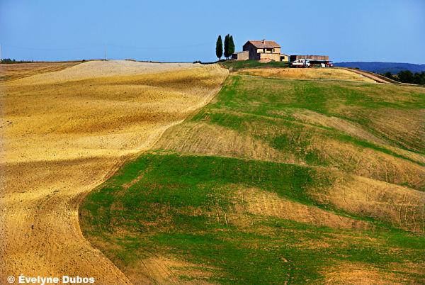 Tracks  (2)  -Tuscany-