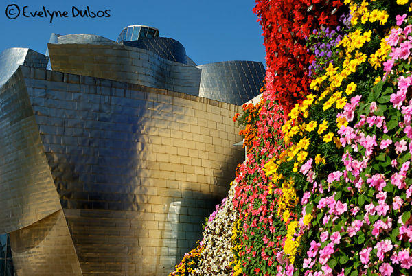 Between flowers and metal  (Guggenheim-Bilbao)