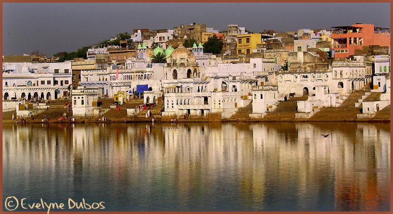 Pushkar, ville sainte. (India)