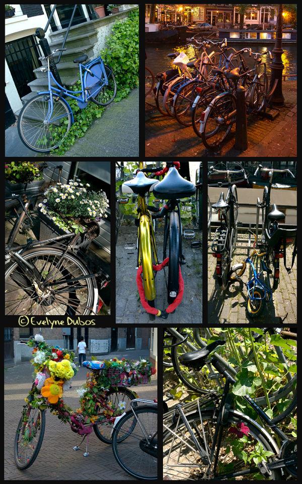 Le vélo dans tous ses états -2- (Amsterdam)