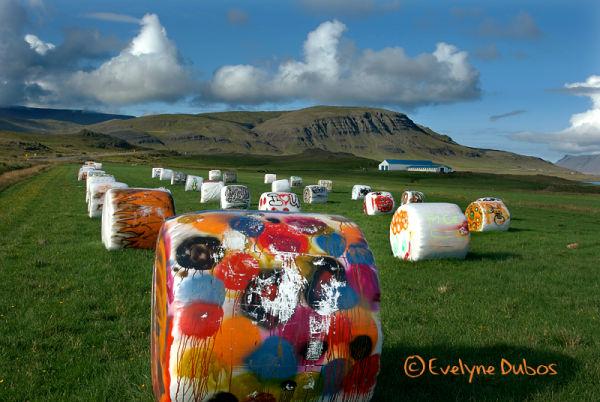 L'art est dans le pré.  (Iceland)