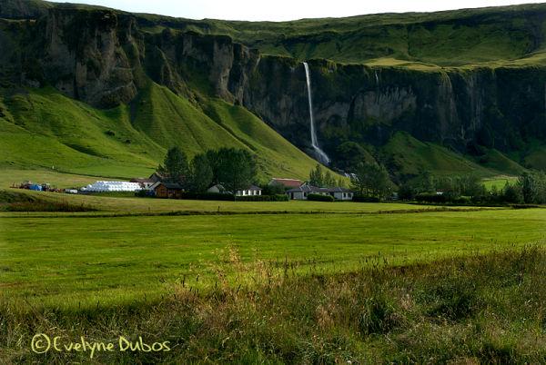 Si j'avais une ferme en Islande... (1)