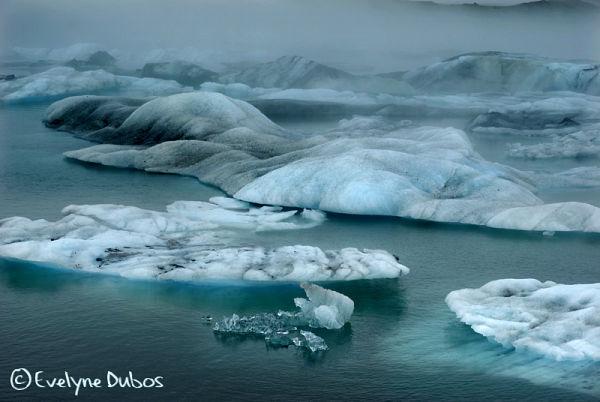 Du chaud... au froid, contrastes Islandais.