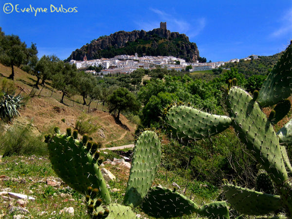 White villages of Andalusia  - 4 -  (Spain)