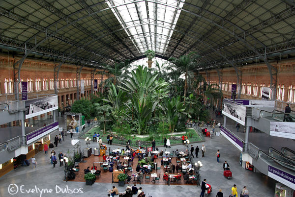 Atocha railway station. (Madrid)
