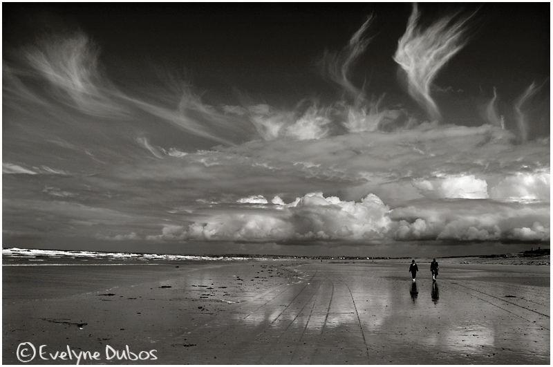 Une journée à la plage : les marcheurs.