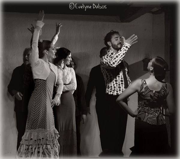 Flamenco attitude  - Madrid -