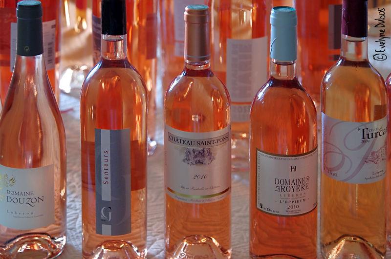 Couleurs et saveurs de Provence  - 1 -