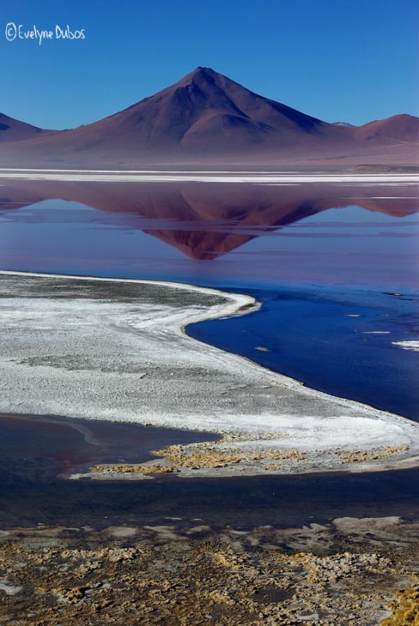 A3-Thérapy(70) : Laguna colorada.